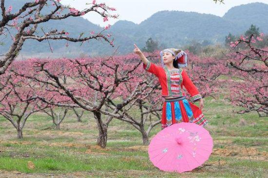 连州桃花节模特