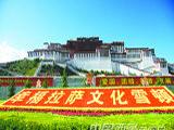 中国拉萨雪顿节