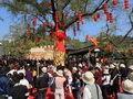 中国长兴泗安花木节