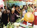 吉林德惠绿色食品节